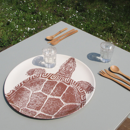 thomas_paul_dienblad_schildpad_picknick.jpg